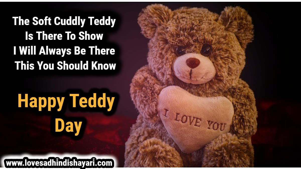 happy teddy day shayari in hindi